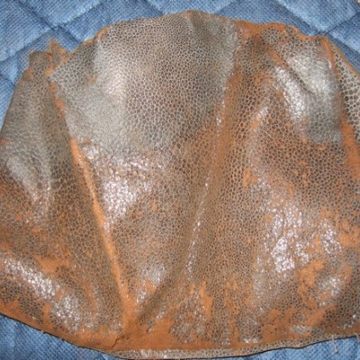 Leather Fragment