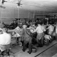 Inside The Lippincott Button Factory